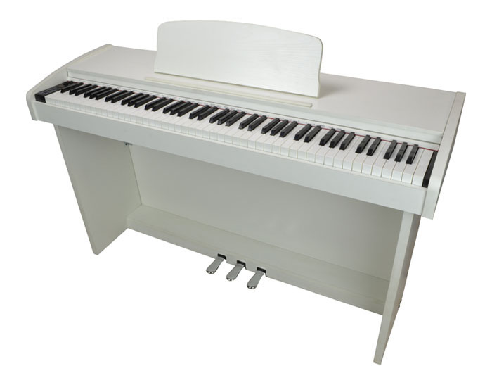 88 Key Electronic Piano With Hammer Ac