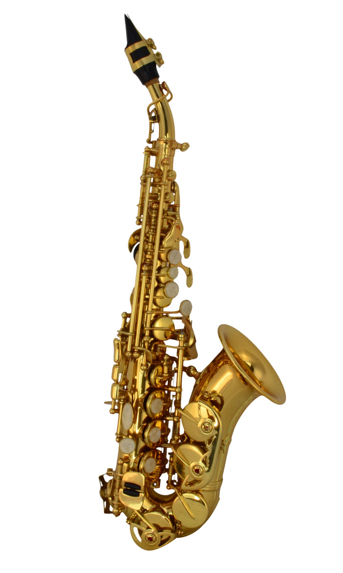 Saxophone Care Awm 1st Lesson Kit Sck Fl Curved With Ebay