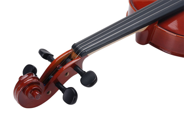 ? Virtuoso Student Violin with case