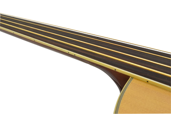 Bryce Fretless Acoustic Bass