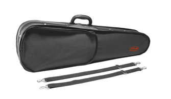 ? Size Violin Case