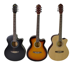 Acoustic Guitar in Choice of Colour