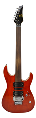 Fretless Electric 6 String Guitar