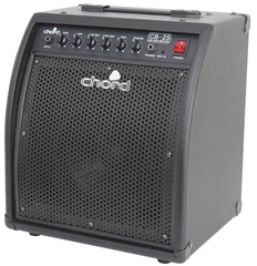 Bass Guitar Combo Amplifier 25 Watt