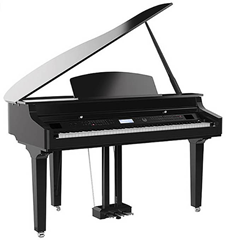 Mini Grand Digital Piano with Polished%2