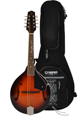 Mandolin A Style and Gig Bag by Bryc