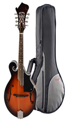 Mandolin F Style and Gig Bag