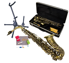 Saxophone 6, Bag and Stand