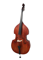Double Bass Solid Wood Top