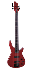 5 String Electric Bass With Neck &%2