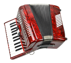 Piano Accordion 48 Bass 26 Keys