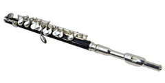 Nickel Plated Piccolo & Case
