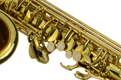Alto Saxophone Professional Grade With C