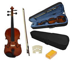 Full Size Violin and Case by Sotendo