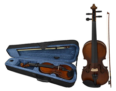 Student Violin 1/8 Size and Case by