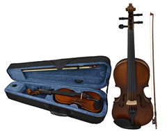 Student Violin 1/2 Size and Case by